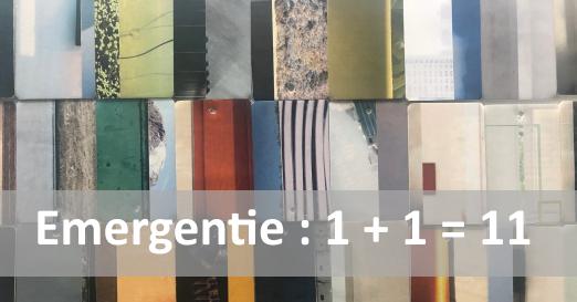 emergentie_mm